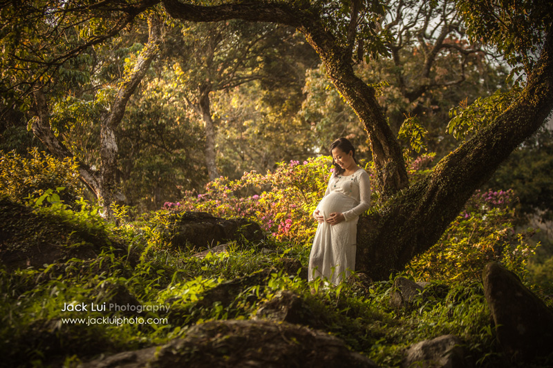 Alice in the Wonderland - Maternity Photo hidden away in the woods